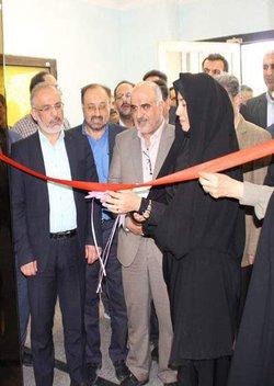 نخستین مرکز مدیریت مهارت آموزی و مشاوره شغلی استان در دانشگاه آزاد اسلامی واحد مجلسی - مبارکه افتتاح شد.