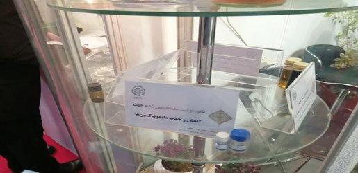 گزارش برگزاری دوازدهمین جشنواره و نمایشگاه فناوری نانو با حضور معاون علمی و فناوری ریاست جمهوری و وزیر نیرو در محل دائمی نمایشگاههای بینالملی تهران