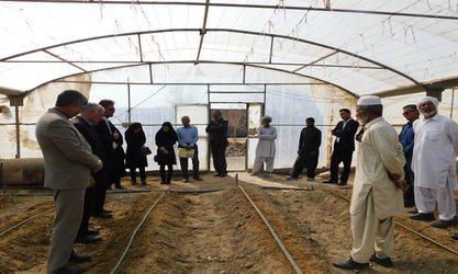 برگزاری کلاس آموزشی مدیریت تلفیقی آفات IPM در مجتمع گلخانه ای چاه نیمه شهرستان زهک