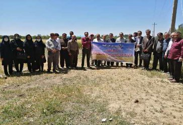 برگزاری روز مزرعه غلات در ایستگاه تحقیقاتی کشاورزی میاندواب آذربایجان غربی