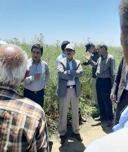 حضور محققان معین مرکز تحقیقات و آموزش کشاورزی آذربایجان غربی  در مرکز خدمات روستایی چایپاسارشرقی