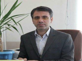 آسیب شناسی شوراها در استان کردستان و الزامات کارآمدی آن