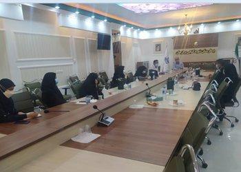 سرپرست دانشکده پرستاری و مامایی دانشگاه علوم پزشکی بوشهر؛ در آیندهای بسیار نزدیک شاهد حضور دانشجویان پرستاری و مامایی در بیمارستان برازجان خواهیم بود
