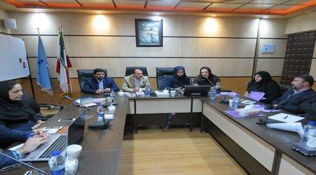 کارگاه آموزشی سامانه مدیریت زنجیره تامین فرآورده های سلامت در گلستان در حال برگزاری است
