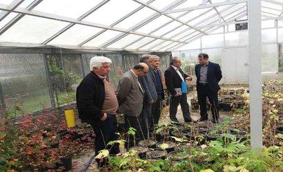بازدید رئیس سازمان جهادکشاورزی استان گیلان از ایستگاه تحقیقات کشاورزی لاهیجان