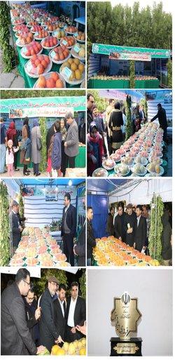 حضور فعال مرکز تحقیقات و آموزش کشاورزی و منابع طبیعی صفی آباد- دزفول در جشنواره مرکبات به مناسبت هفته فرهنگی شهرستان دزفول