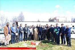 دانشگاهیان بناب با غرس کردن نهال در روز ملی درختکاری مشارکت کردند