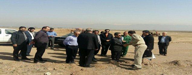گزارش تصویری کاشت درخت توسط کارکنان دانشکده محیط زیست در تالاب صالحیه
