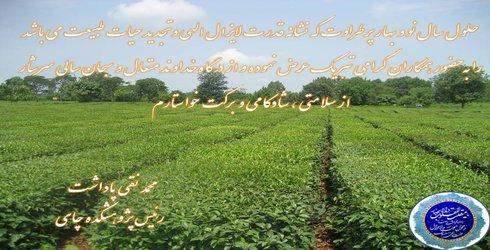 پیام تبریک دکتر پاداشت رئیس پژوهشکده چای به مناسبت آغاز سال جدید