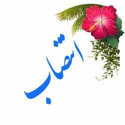 انتصاب مدیر گروه معارف اسلامی دانشگاه